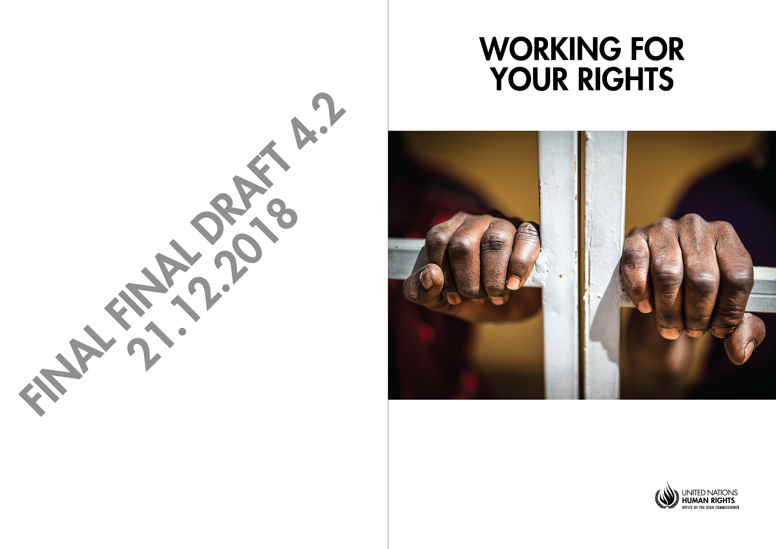 OHCHR Working For Your Rights (Report & Poster Campaign)